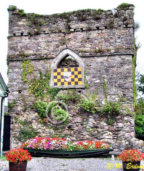 Inistioge Tower