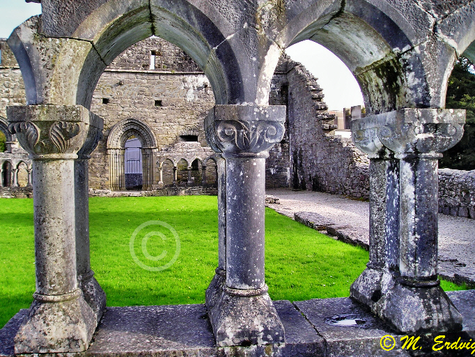Ireland Friday Freebie Cong Abbey Irelandyes Ireland