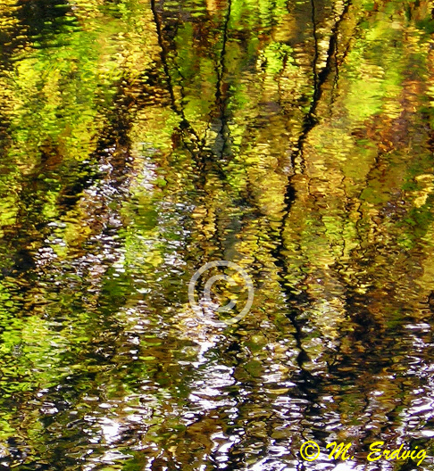 Cong Reflections, Co. Mayo