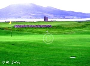Fenit Golf